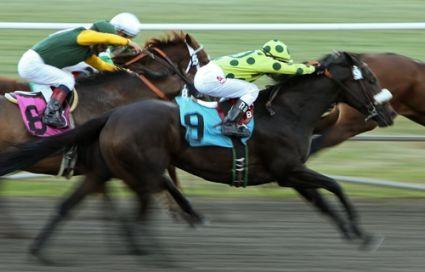Pony gambling term
